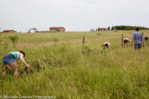 Clearing the perimeter of the site in order to put up the fence.
